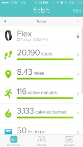 This was my best fitbit day so far! 3/24/14